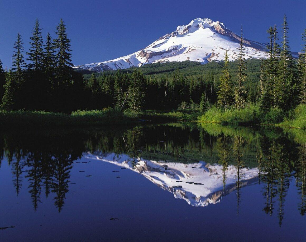 Best Meditation Retreats in Oregon